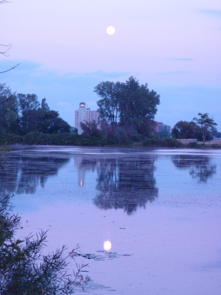 Evening at Belle Isle